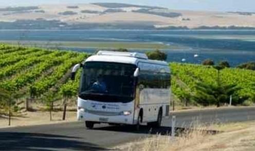 Beberapa Jenis Bus Pariwisata yang Cocok Digunakan