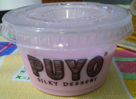 Kelezatan Puyo Silky Dessert